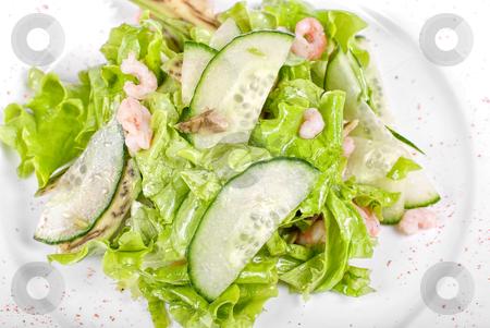 Shrimp salad stock photo, shrimp salad with cucumber and avocado by olinchuk