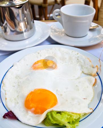 Prepared Egg  stock photo, Prepared Egg - Isolated prepared egg under the sun by ilolab