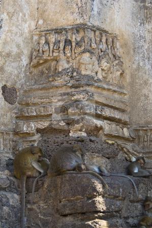 Wat Phra Prang Sam Yot stock photo, part of the temple Wat Phra Prang Sam Yot in Lopburi by Juliane Jacobs