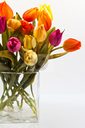 Part of the bouquet of tulips stock photo, part of the bouquet of tulips different colors on a white background by ludinko