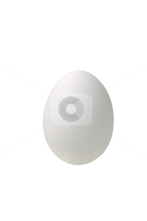 Egg stock photo, White chicken egg, includes clipping path by Bryan Mullennix