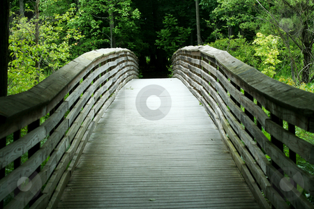 Wooden bridge through the forest stock photo, a Wooden bridge through the forest by Jim Mills
