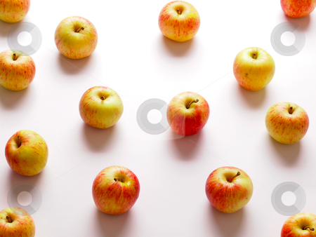 Red apples stock photo, close up of red apples on white by zkruger
