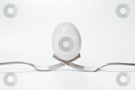 Egg on a Pair of Forks stock photo, A egg that is set on the top of two forks.  Eggs have so many uses from dieting to making recipes for baking. by TommyBrison