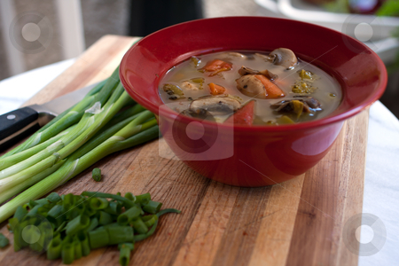 Minestrone vegetable soup stock photo, Vegatable soup wiyh green onions on a wood cutting board by Gunter Nezhoda