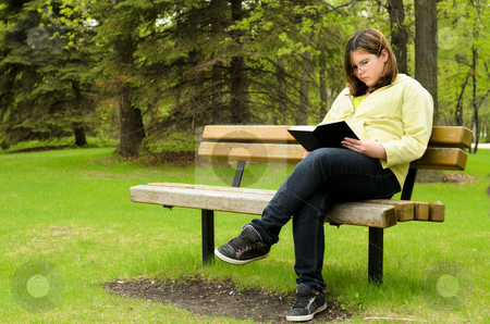 Reading In The Park stock photo, A young girl is sitting on a bench, reading a good book. by Richard Nelson