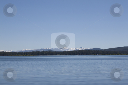 Blue sky on a calm lake stock photo, A beautiful blue summer day at the lake. by Jeremy Baumann