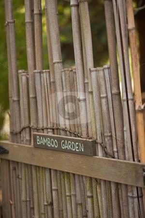 Babmboo Garden stock photo, Peaceful bamboo garden in traditional Japanese garden. by Mariusz Jurgielewicz
