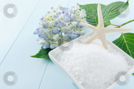 Sea Salt Bath Scrub stock photo, Still life with sea salt bath scrub accented with starfish and hydrangea blossom - copy space on left side by Karen Sarraga