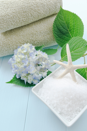 Sea Salt Bath Scrub in a Spa Setting stock photo, Sea salt bath scrub set against a light blue background accented with hydrangea and starfish. by Karen Sarraga
