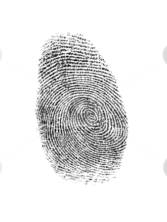 Finger Print stock photo, A finger print isolated against a white background by Kitch Bain