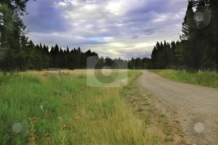 Dirt Road stock photo, A narrow dirt road with storm clouds by Don Fink