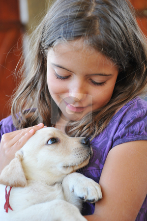 Puppy labrador retriever and little girl stock photo,  purebred puppy labrador retriever  and smiling little girl by Bonzami Emmanuelle
