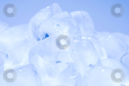 Group of ice cube stock photo, group of ice cube in blue background by Lawren
