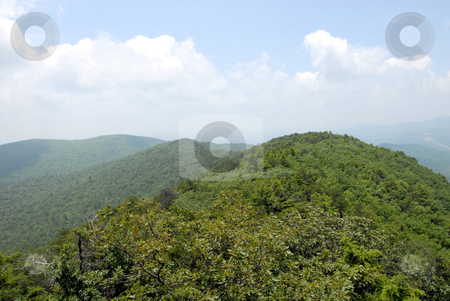 Green top stock photo, View from the top of Moore's Wall in Hanging Rock State Park in North Carolina by Tim Markley