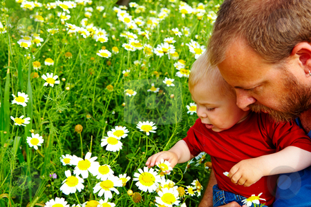 Father and son in flowers stock photo, little boy and his father enjoying outdoors in field of flowers on a summer day by lubavnel