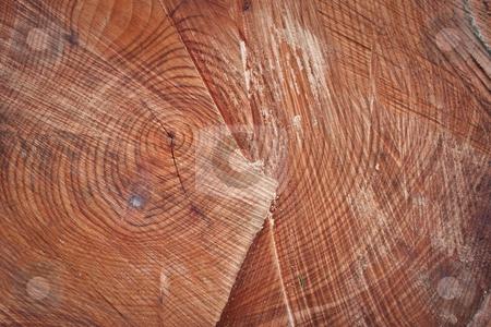 Wood stock photo, wood background by trgowanlock