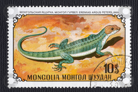 Mongolian Lizard Stamp stock photo, Eremius Argus Lizard on a Mongolian Postage Stamp isolated on black by d40xboy