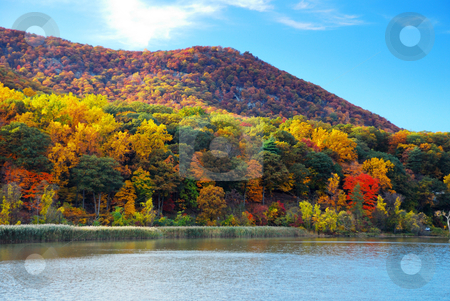 Autumn Mountain with lake stock photo, Autumn Mountain with lake view and colorful foliage in forest. by rabbit75_cut