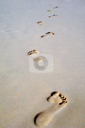 Footprint in sand on beach stock photo, Footprints in the sand on a beach by Lars Christensen