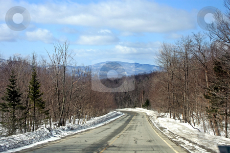 Winter Road stock photo, A road in winter with trees and snow to the sides. by Lucy Clark