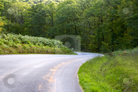 Curve road descending through a green forest stock photo, Curve road descending through a green forest by arzawen