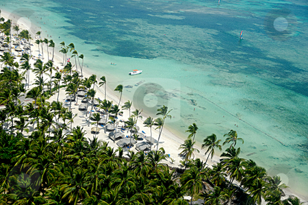 Tropical beach with palms and white sand stock photo, Flying over tropical beach with palms and white sand by Lars Christensen