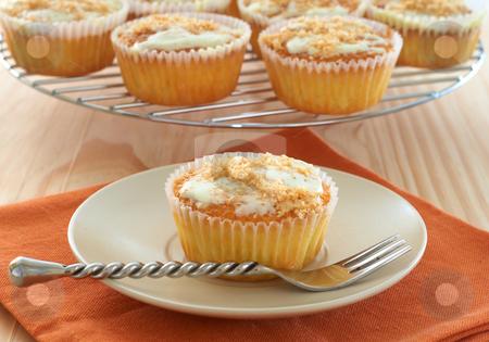 Freshly baked coconut vanilla cupcakes stock photo, Freshly baked coconut vanilla cupcakes on white plate by Elena Weber (nee Talberg)