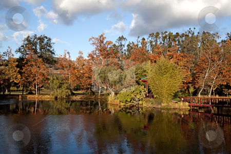 Pond in the Fall stock photo, A natural pond with water and fall colors by Kevin Tietz