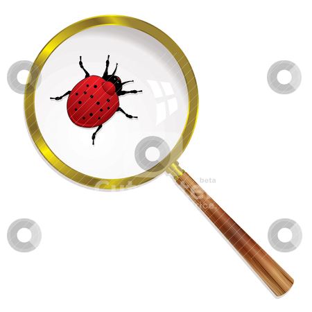 Magnify ladybird stock vector clipart, Ladybug magnified under a lens with wooden handle and shadow by Michael Travers