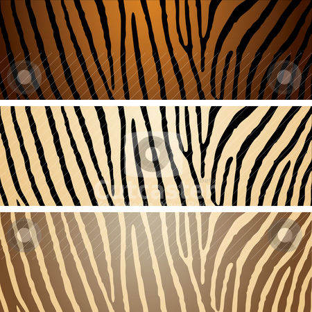 Zebra variation stock vector clipart, Collection of three zebra patterns with camouflage effect by Michael Travers