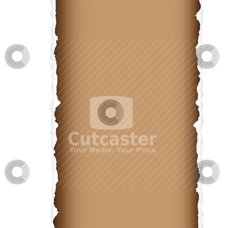 Brown tear divide stock vector clipart, Brown background with torn edges and white paper strip by Michael Travers