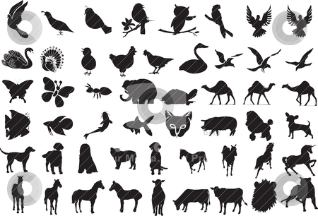 Animal Silhouettes Over 50 animal silhouettes stock vector clipart, Animal Silhouettes Over 50 animal silhouettes by Basheera Hassanali