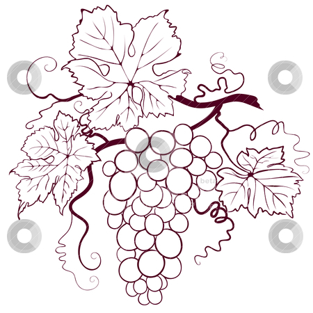 Grapes With Leaves stock vector clipart, Grapes With Leaves, editable vector illustration by juland