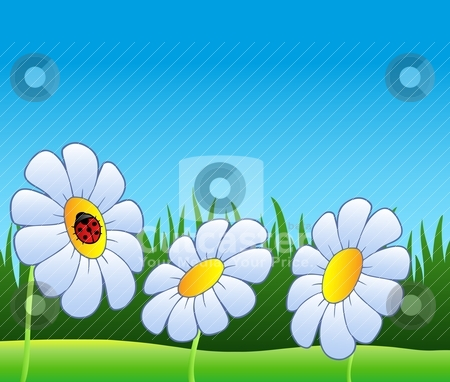 Three daisies and ladybug stock vector clipart, Three daisies and ladybug - vector illustration. by Klara Viskova