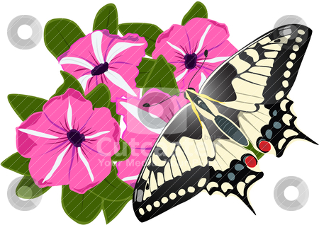 Butterfly and flowers stock vector clipart, Illustration of a spring theme. A butterfly sitting on flower by Sergey Skryl