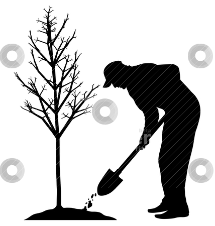 Planting a tree stock vector clipart, Man is planting a tree. Isolated white background. EPS file available. by Edvard Molnar