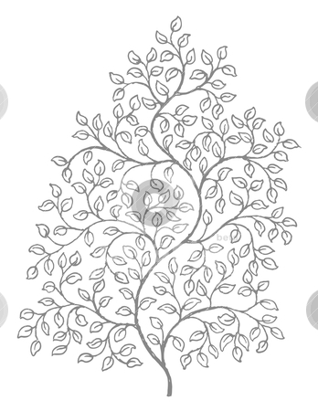 ornate elegant curly vines illustration stock vector