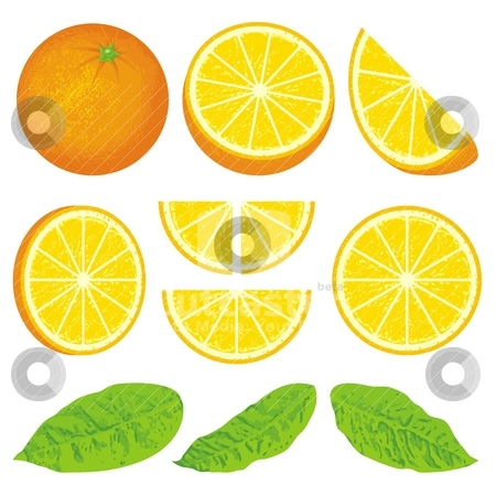 Orange stock vector clipart, Orange and slices at different angles, also three versions of leafs all with grunge shading. by fractal.gr